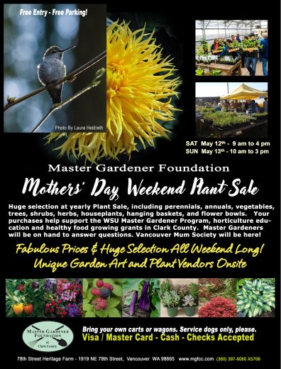 Mother's Day Plant Sale Poster
