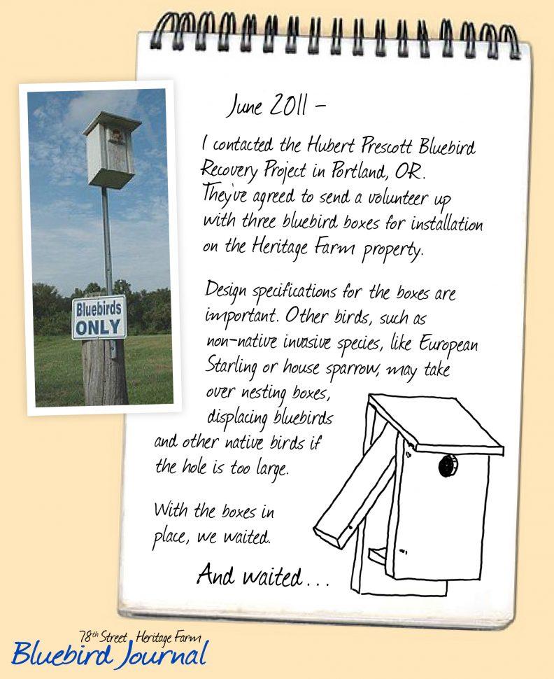 Bluebird Journal June 2011. Hubert Prescott Bluebird Recovery Project donated nesting boxes. Info about nesting. Photo and drawing of nesting boxes.