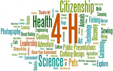 4-H-Wordle-small1