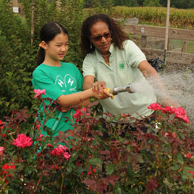 4-H Leader and youth watering a rose garden
