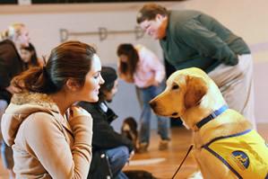 4-H youth training her Labrador retriever.