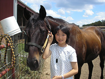4-H Japanese Exchange youth caring for her exchange family's horse.