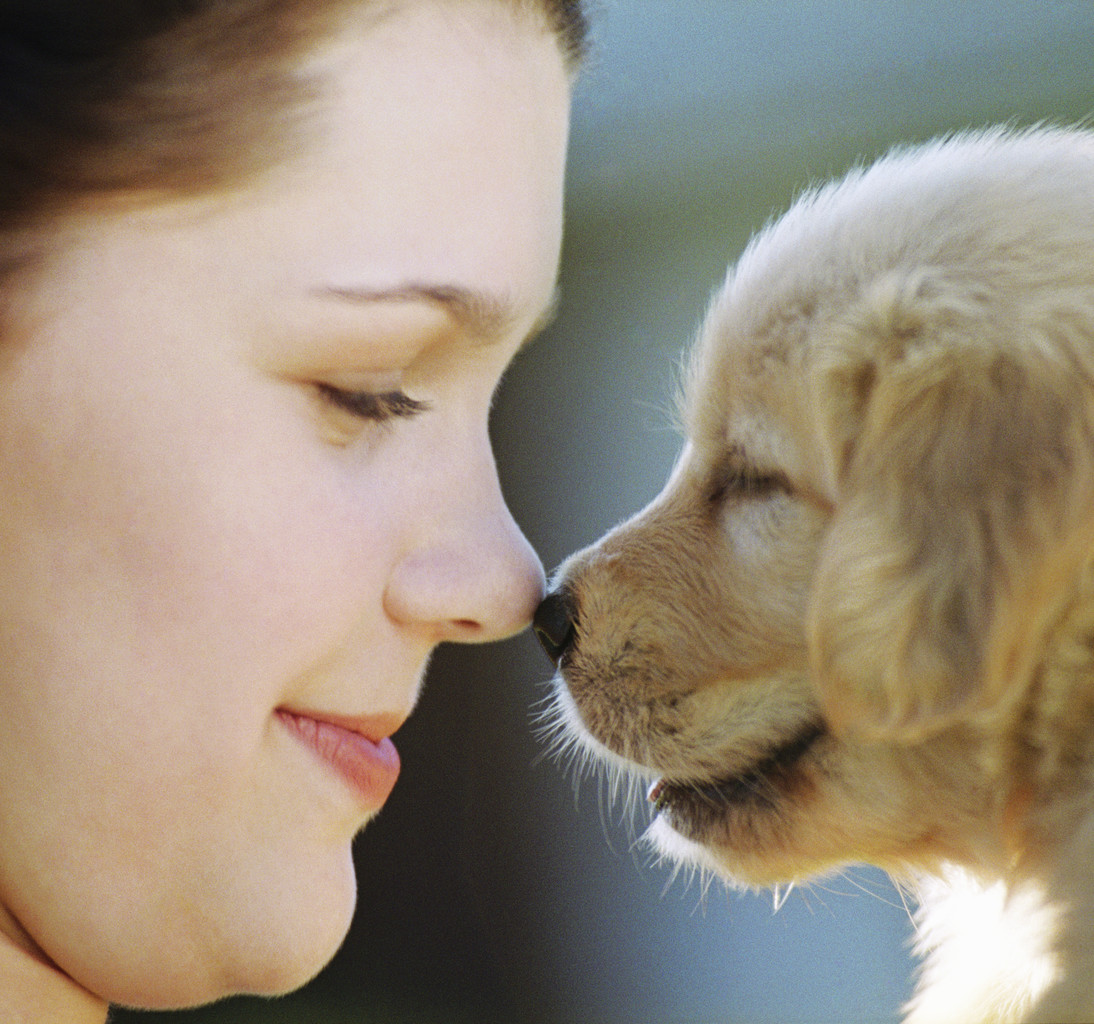 Girl Rubbing Noses with Pupp