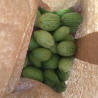 Cucamelons in a paper bag.