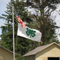 American and 4-H flag on flagpole at Camp