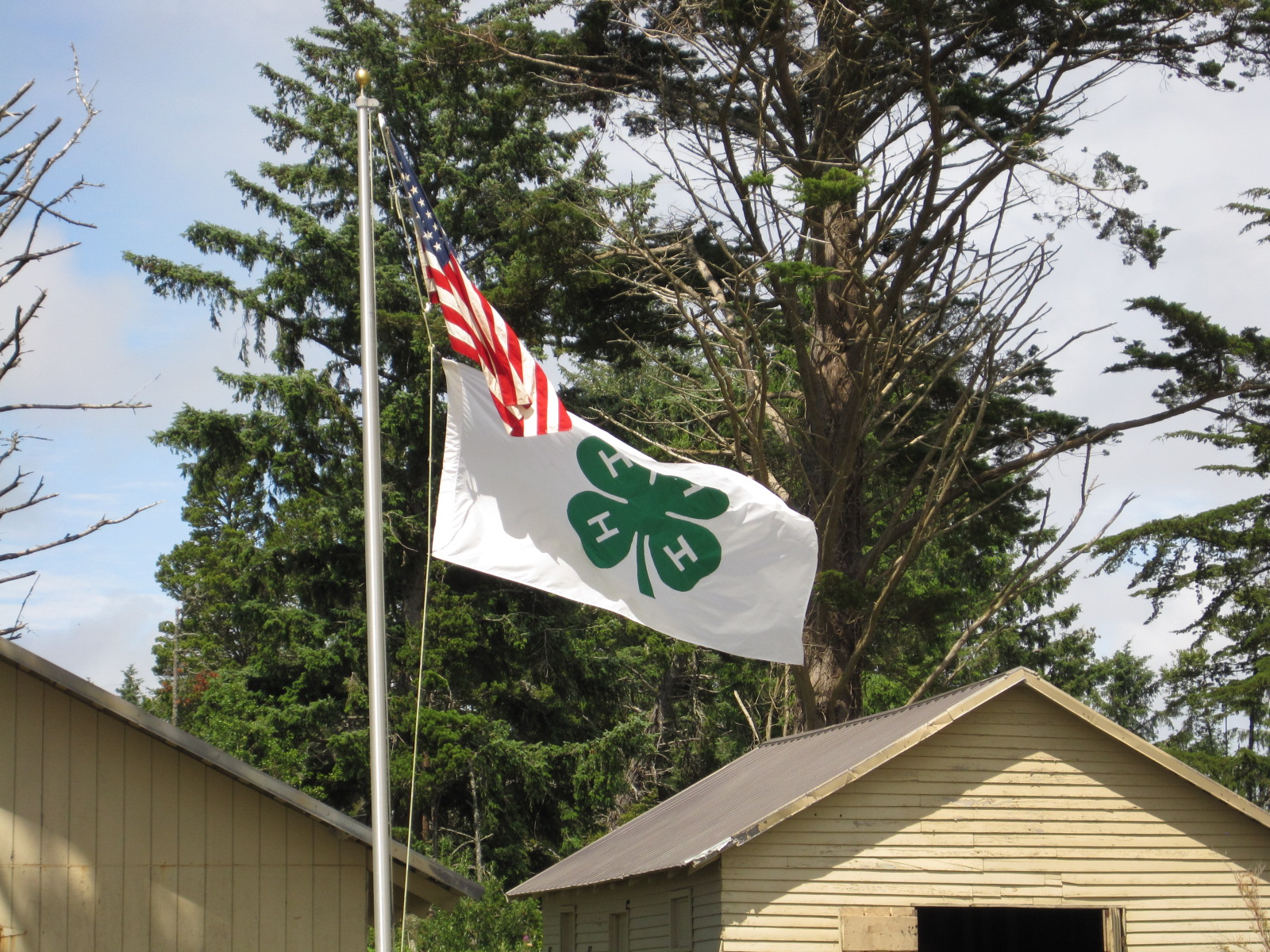 American and 4-H flag on pole at camp