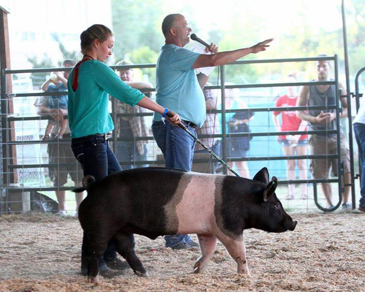 Girl showing black and pink pig