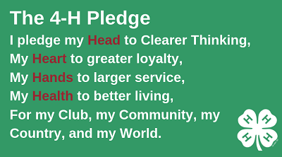 4-H pledge including head, heart, hands, and health