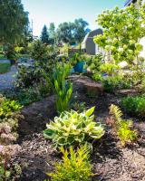 sunshadow garden