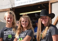Three girls in 4-H