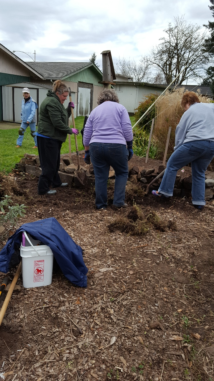 Master Gardener's working in the demo garden.