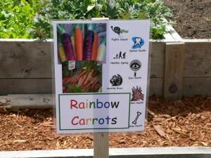 carrot-sign-300x225