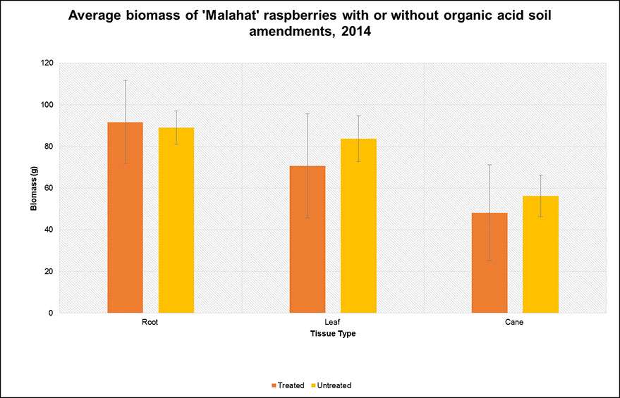Graph indicating average biomass of Malahat raspberries