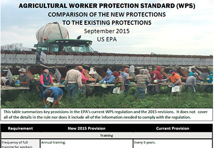 Partial screencap of chart comparing new and existing federal worker protection standards