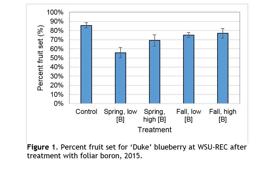 graph of duke blueberry