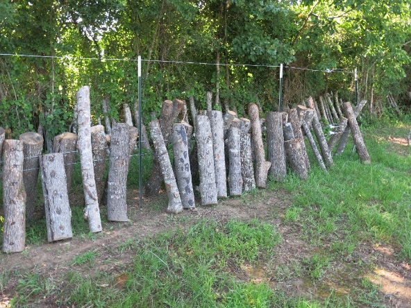 image of log fence