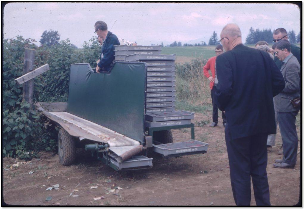 Sevoss1969