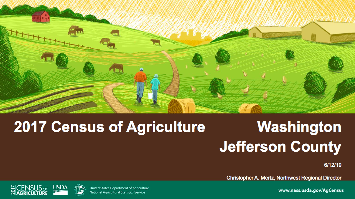 Jefferson 2017 Census Data Slides Button