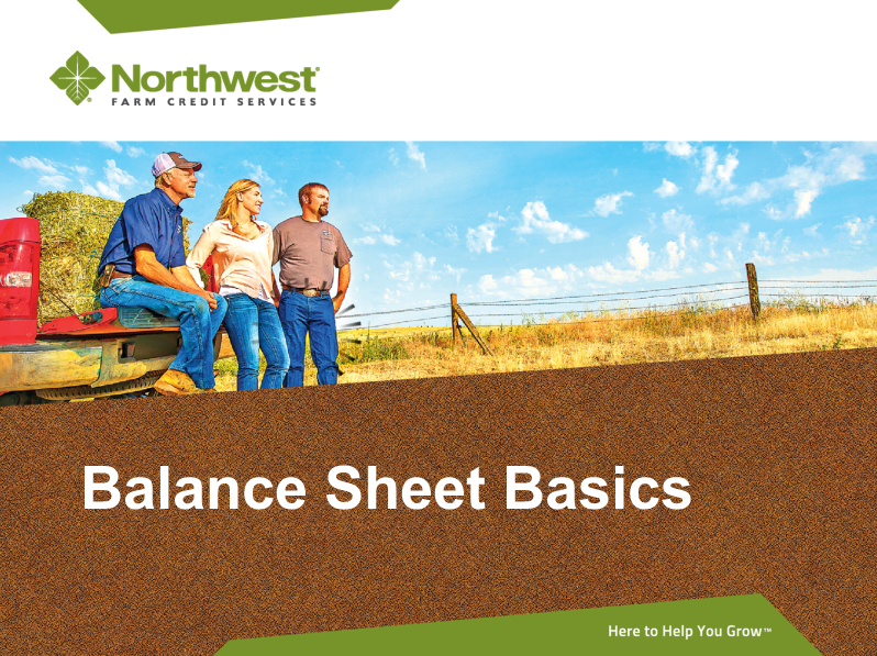 NW Farm Credit Balance Sheet Basics
