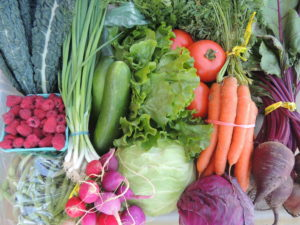 colorful display of organic vegetables to show what organic certification looks like on a farm with vegetables