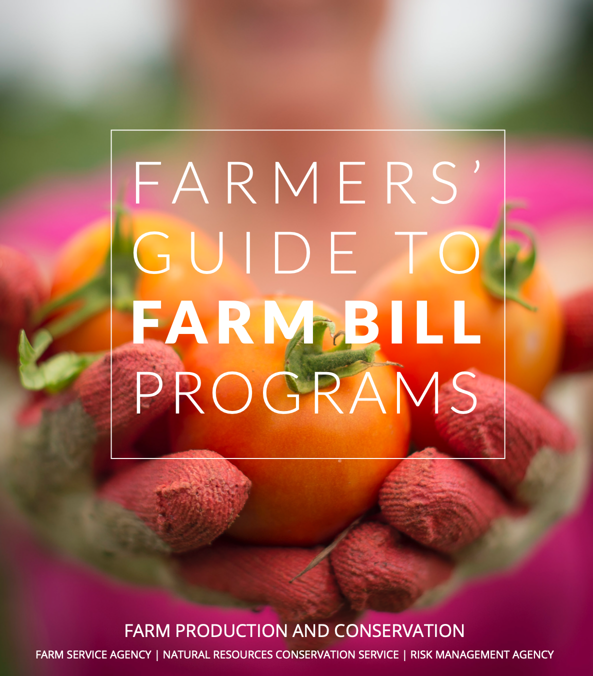 Farmers Guide to Farm Bill Programs