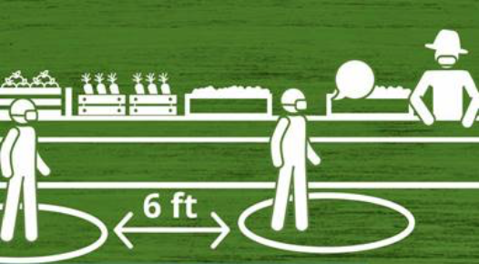 illustration of ag workers in field