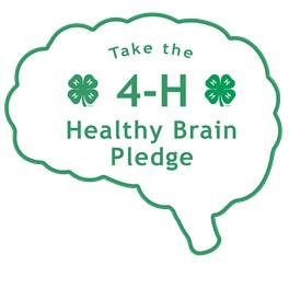 Take 4-H Healthy Brain Pledge silhouette of a brain