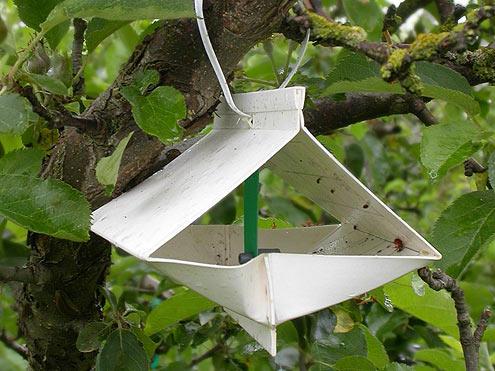 pest trap