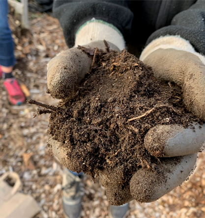 gloved hands holding soil