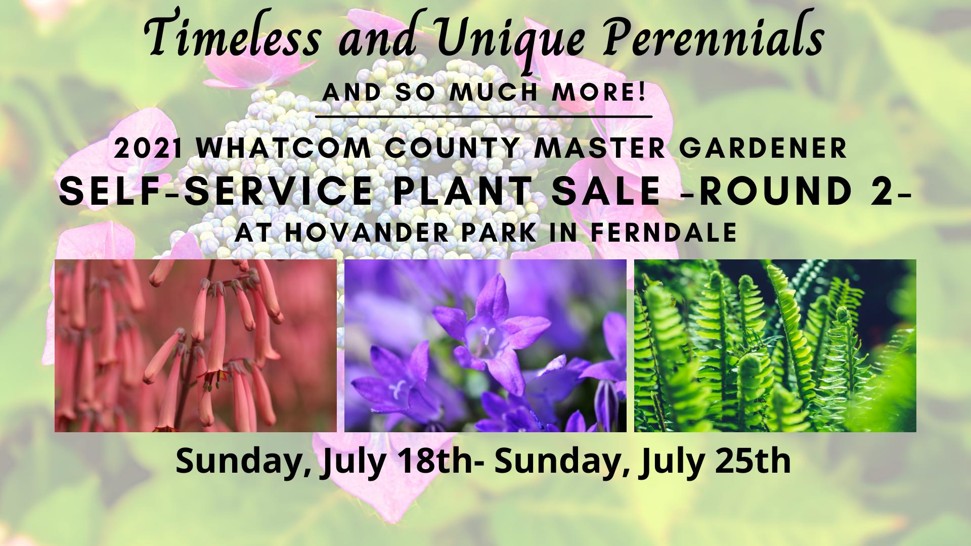 Perennial Plant Sale info sheet