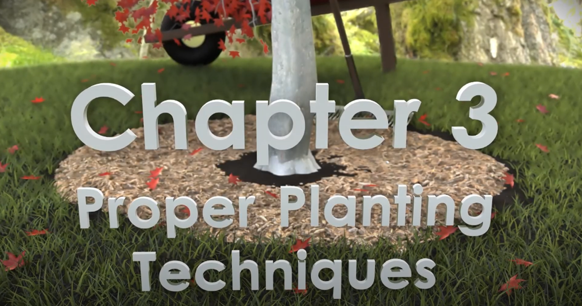 Chapter 3 title card of video
