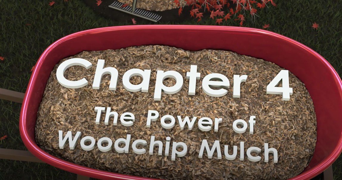 Chapter 4 title card of video