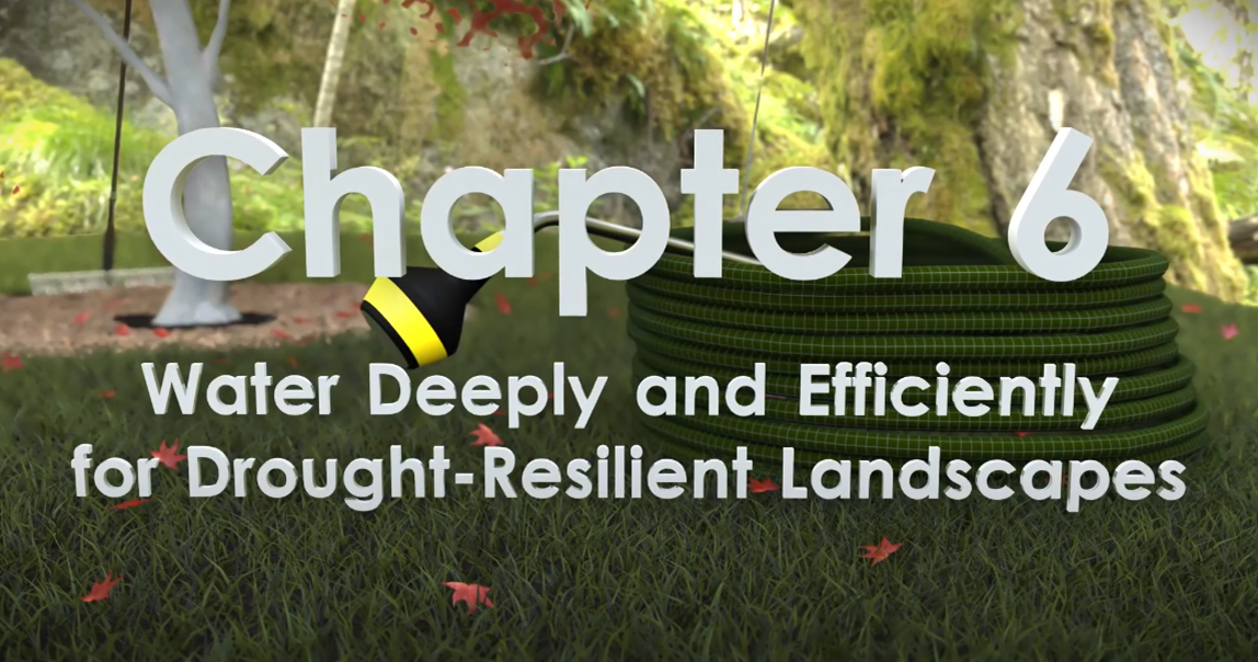Chapter 6 title card of video