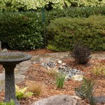 Rain garden photo: EdmondsRGs2