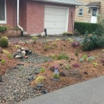 Rain garden photo: Pierce Co PCD 0227150944b
