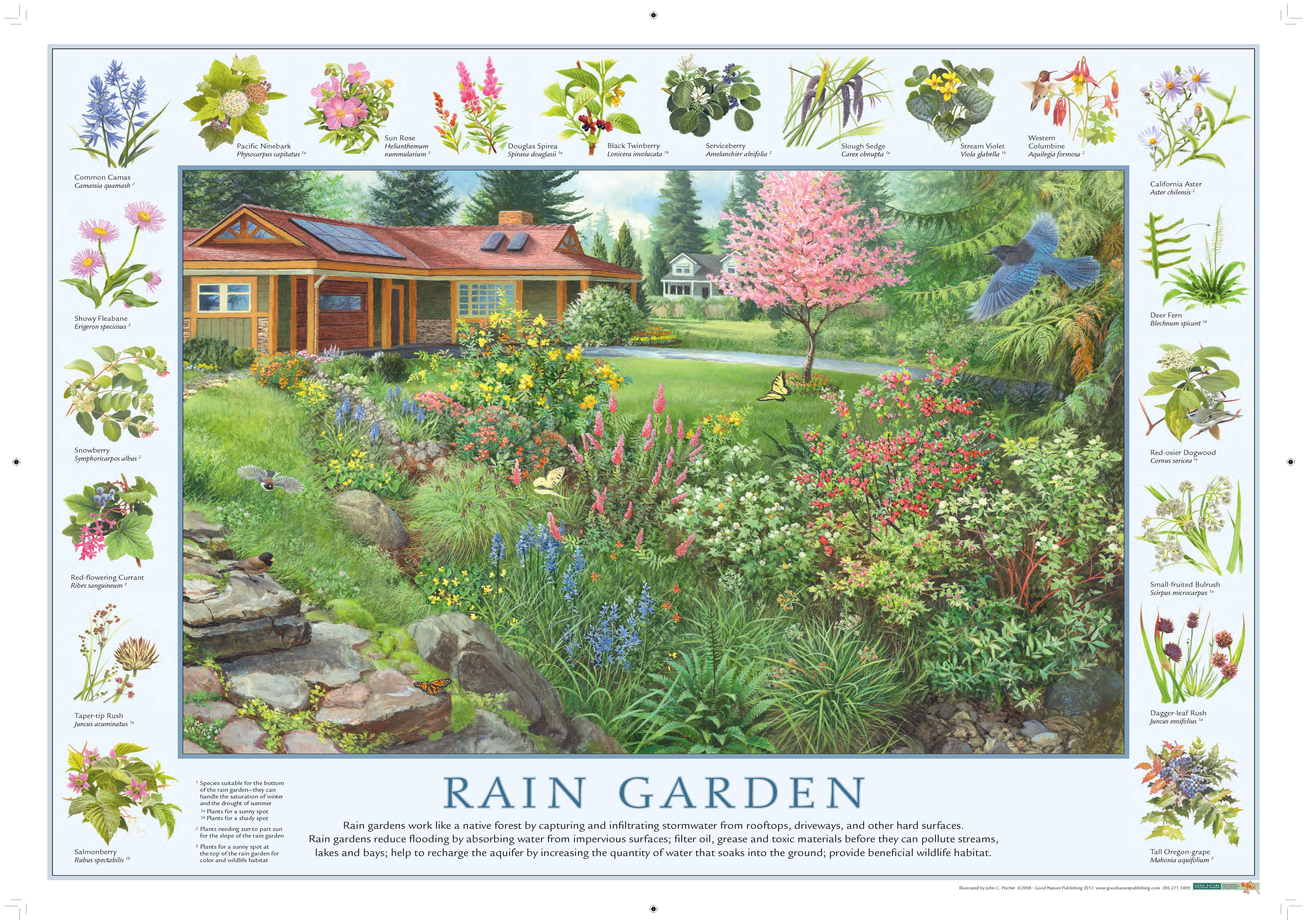 Rain gardens washington state university extension for Garden workshop designs