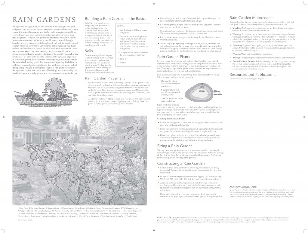 Rain Garden poster - back with detailed text about rain gardens