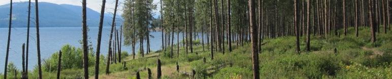 Lake Roosevelt, Stevens County