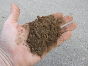 Hand with soil: 50/50 screened chocolate loam dillo dirt