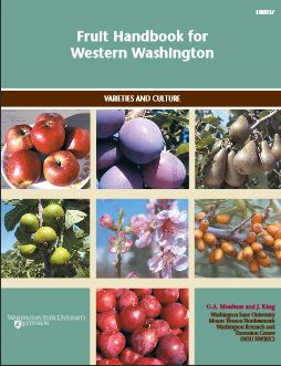 Image of Fruit Handbook for Western Washington