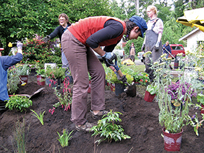 Planting_Kim Gridley photographer_6 copy