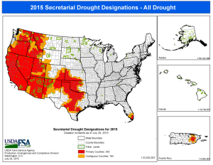 "USDA Drought  Designations Updated 07.29.15 Courtesy USDA Farm Service Agency. To qualify on its own as a designated disaster area by the U.S. Department of Agriculture, a county must be classified as being in a ""severe drought"" for eight straight weeks by the U.S. Drought Monitor.  This map shows which counties qualify for aid as of the date shown on the map."