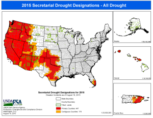 """USDA Drought Designations Updated 08.19.15 Courtesy USDA Farm Service Agency. To qualify on its own as a designated disaster area by the U.S. Department of Agriculture, a county must be classified as being in a """"severe drought"""" for eight straight weeks by the U.S. Drought Monitor. This map shows which counties qualify for aid as of the date shown on the map."""