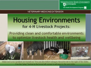 Housing Environments for 4-H Livestock Projects