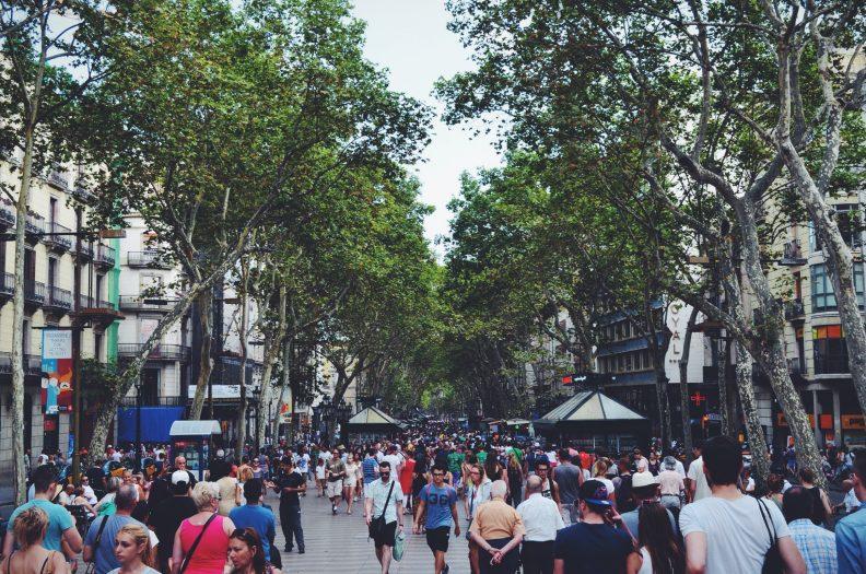People walking under green trees