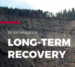 SR530 long-term recovery cover page