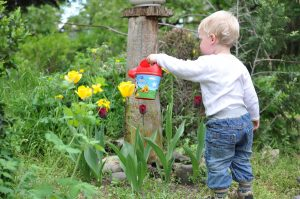 Toddler boy watering plants