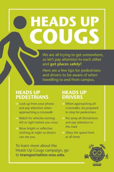 pedestrian_safety_info