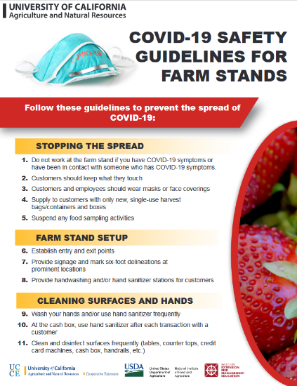The image of the Covid Safety Plans for Farm Stands Flyer