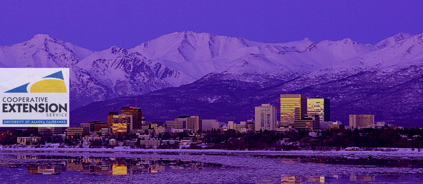 Alaska skyline with buildings and mountains